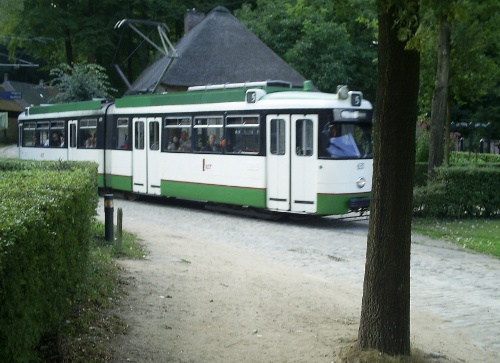 Yet another tram ... these woods are JUMPING with traffic